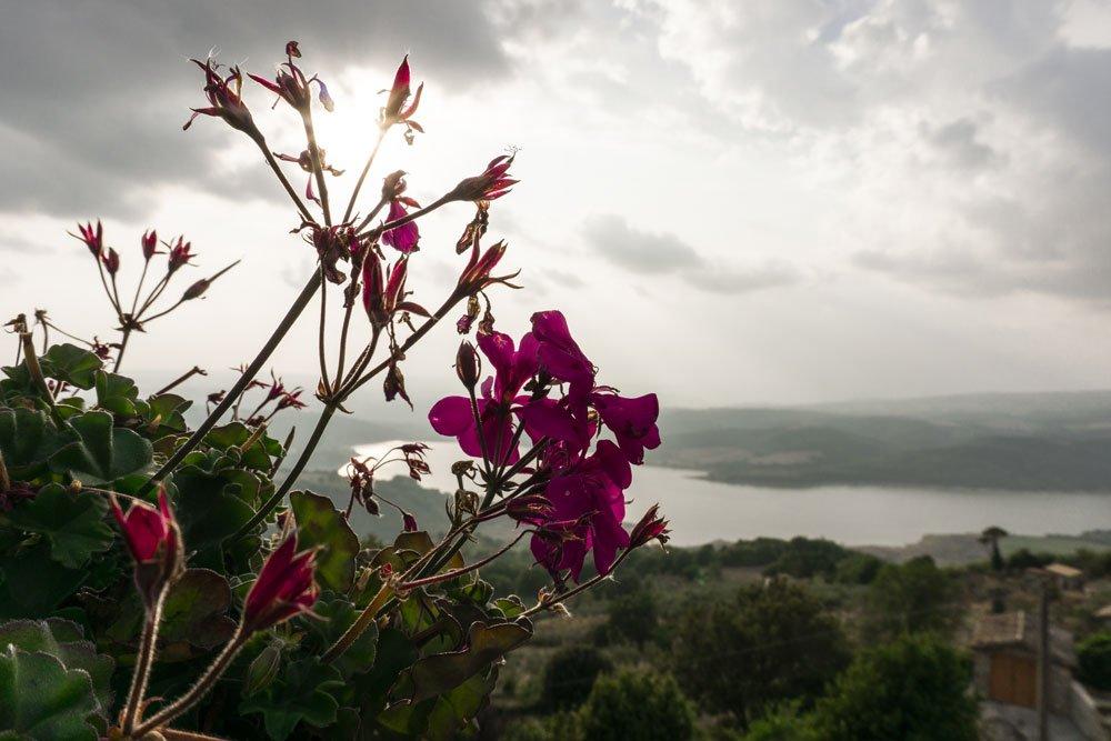 Il Lago di Corbara visto da Civitella del Lago